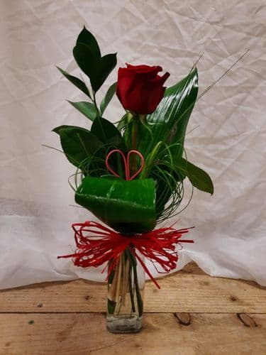 Single Deluxe Red Rose in a Vase