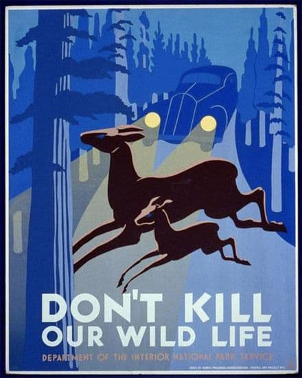 Don't Kill Our Wild Life National park - Metal Travel Wall Sign