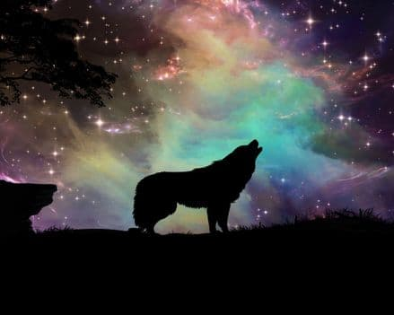 Wolf night starry sky - Metal Advertising Wall Sign