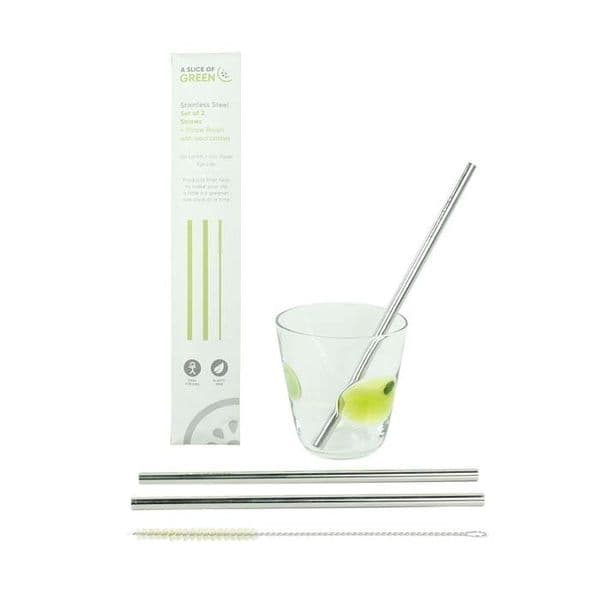 A Slice of Green Stainless Steel Straws 2 pack + brush
