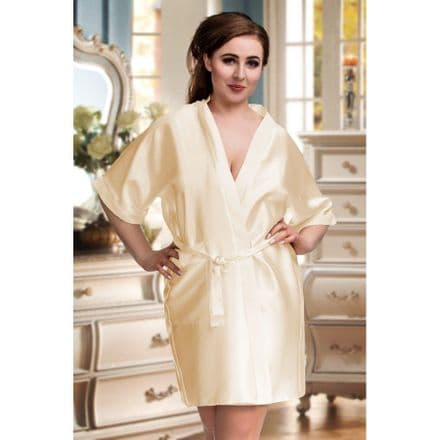 Silky  Champagne dressing gown