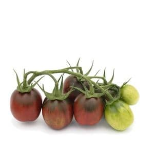 TOMATE PRUNE NOIRE moins cher