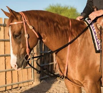 Schutz Brothers Draw Rope Martingale